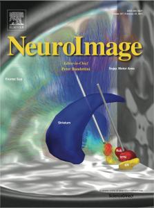 neuroimage_coverart_horn_lead_dbs_2015